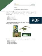Principios_básicos_de_clasificación