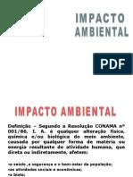 Impacto Ambiental II