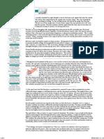 erection anatomy excercise good.pdf