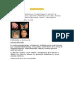ESCLERODERMIA.docx