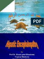 hepatic encephalopathy pptهام جداااا