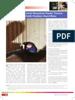 Guideline EULAR 2013