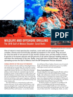Wildlife and Offshore Drilling Coral Reefs
