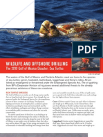Wildlife and Offshore Drilling