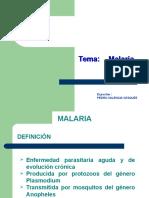 4 Malaria DGE