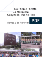 Excursion Parque Forestal