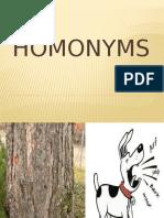 Homonyms.ppt