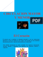 Circulacion Mayor y Menor