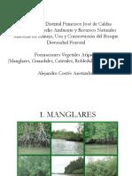 Asociaciones vegetales.pdf