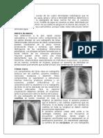 Anatomia Radiologica y Tomográfica