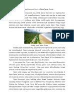 Ekowisata Konservasi Penyu Di Pantai Taman