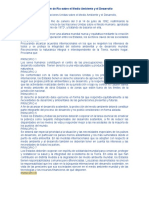 Declaración Rio (Documento)