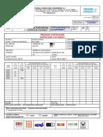 Tecnicas Reunidas-jazan - Supervisor Statement a.redigolo