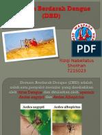 SAP DBD Ppt (Rizqi Nabellatus S. 7215023)