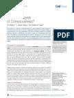 conciencia 8.pdf
