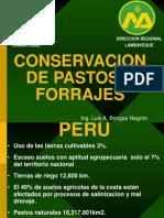 Conservacion de Pastos