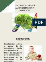Psicopatología de la Orientación y Atención