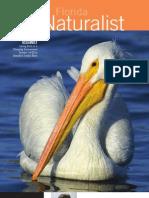 Summer 2008  Florida Naturalist Audubon of Florida