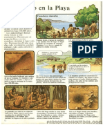 Prehistoria .El Hombre Primitivo .Ediciones Plesa