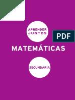 Aprender Juntos Fundamentación Matematicas Secundaria