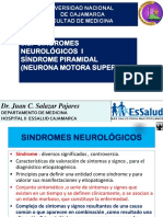 3-a-Grandes-Sindromes I-Motor-NMS-2016.pdf