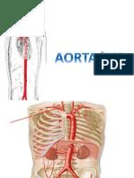 presentation resumen imagenes patologias ivc aorta  2