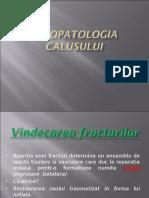 01-Fiziopatologia-calusului