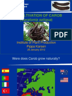 The Cultivation of the Carob Tree (Ceratonia Seliqua) for Commercial and Resource Poor Farmers