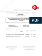 66205045 Informe Final Paneton Angel Carhuapoma