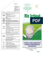 Fiche riz irrigue.pdf