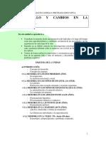 desarrollo y cambios en la memoria.pdf