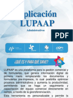 LUPAAP administrativos
