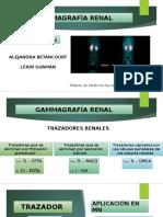 Gammagrafía Renal