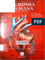 Quiroz Tomo II [Librosmedicospdf.net].pdf