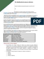 PRÁCTICA Nº03.docx