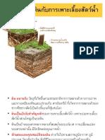 Soil-ppt