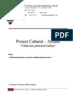 Proiect Cultural Artistic Bun