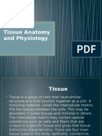 Tissue Anatomy and Physiology