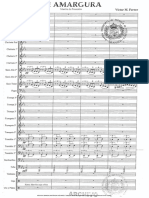 MI AMARGURA 1 Víctor Ferrer.pdf