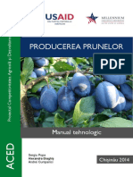 ACED Manual - Producerea Prunelor