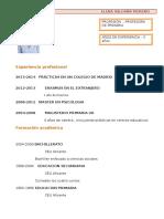 Curriculum Vitae Modelo1 Marron