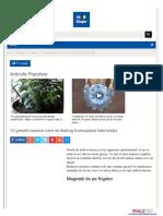fasingur-com (1).pdf