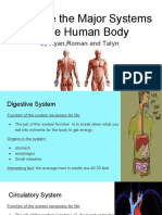 ryantalyn and romans  humanbodysystemsproject