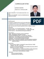 CV Karl Guzmán 2017