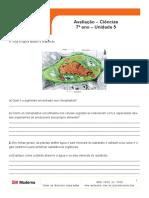 ava_cie7_uni5 (1).pdf