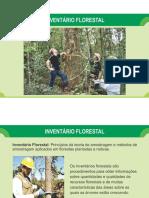 Aula 8 - Inventario Florestal