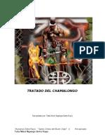 Chamalongo.pdf