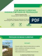 AULA 2 - PRODUCAO DE MUDAS FLORESTAIS - VIVEIROS E METODOS DE PROPAGACAO (1).pdf