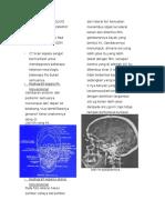 Catatan Kuliah Radiologi