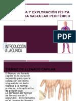Sistema Vascular Periférico